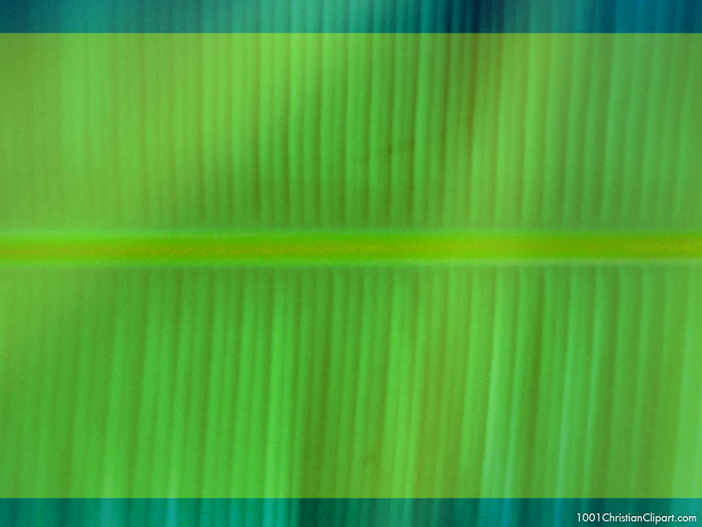 green banana leave background