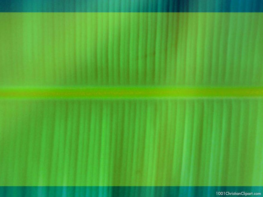 green banana leave background